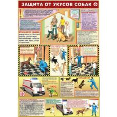 П1-Комп 594x420 Компьютер и здоровье - 1 плакат