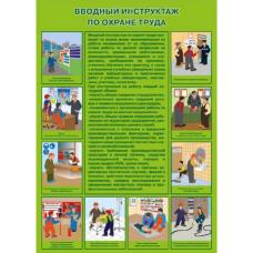 П1-Вводный 594x420 Вводный инструктаж по охране  труда - 1 плакат
