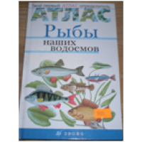 Бровкина Е.Т. и др. Твой первый атлас – определитель. Рыбы наших водоемов.