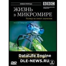 DVD Жизнь в микромире