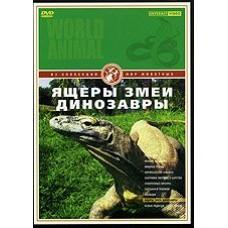 DVD Мир живорных. Ящеры. Змеи. Динозавры (пресмыкающиеся, обитающие в Тайланде)