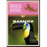 DVD Мир животных. Малыши