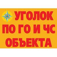 Уголок по ГО и ЧС объекта. Содержание проводимых мероприятий (11 плакатов)