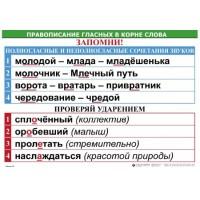 Правописание гласных в корне слова (5табл+32 карт) для начальной школы 50х70 см