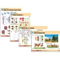 Комплект таблиц по биологии Общая биология - 1 (16 лам. таб. А1)
