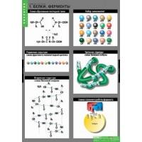 Комплект плакатов Химия клетки (3табл. 68х98 см)