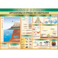 Экология (8 плакатов 100х70)