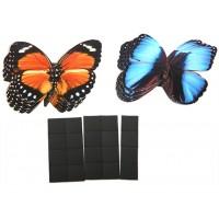 Счетный материал на магнитах  Бабочки  (с+к) 20 шт.