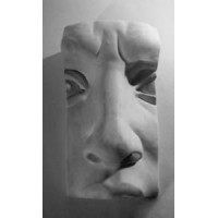 Анатомические детали, Нос Давида.