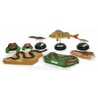 Х24 Позвоночные животные (комплект муляжей 8 шт высотой от 5 до 10 см; общий вес 1,040 кг)
