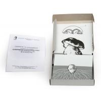 К32 Размножение шляпочного гриба (набор из 9 карт) 15х15