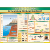 Экология. Организмы и среды их обитания (100х70)