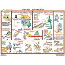 Безопасность труда при деревообработке (5 плакатов, ламин.)