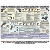 Оружие ударно-травматического действия (Макарыч, Наганыч, Оса, МР471)