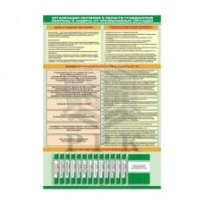 "Комплект из 7 плакатов ""Организация подготовки и обучения по ГО и ЧС"""